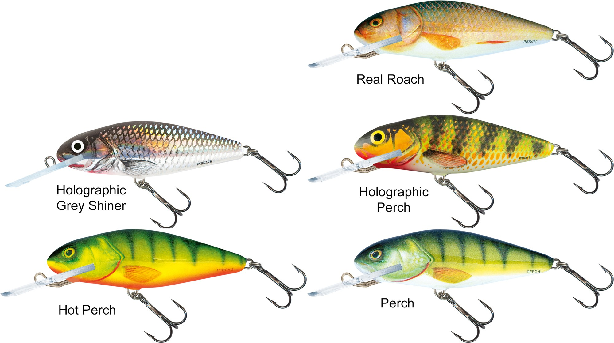 Salmo Fatso lure pullbait RPH real perch