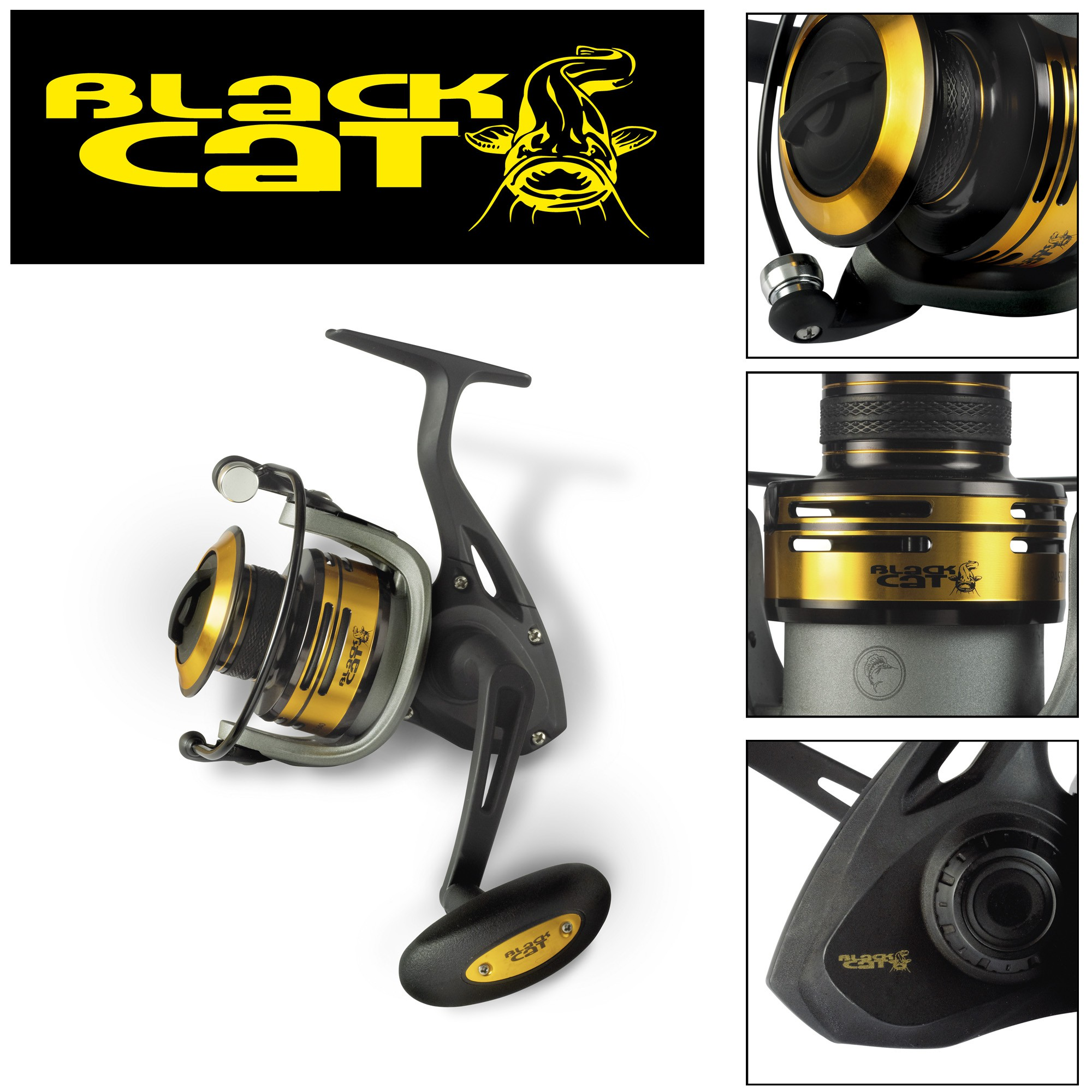 Black Cat Passion  Fd