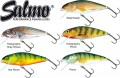 5 Salmo Wobbler Perch Köder 12cm 36g