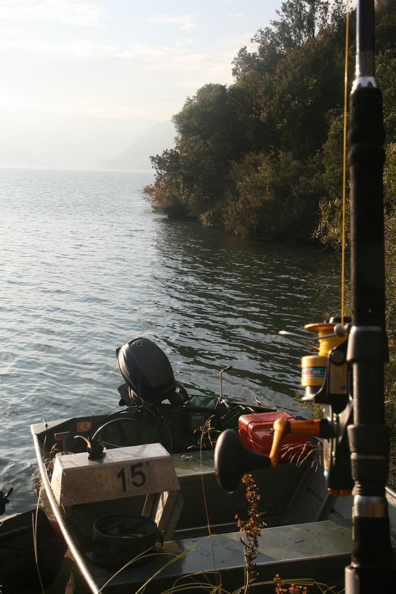 Wallerangeln vom Boot