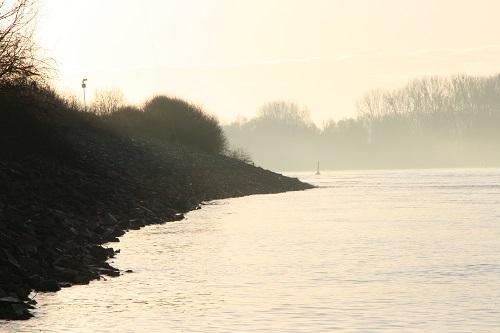 Zanderangeln in der Elbe