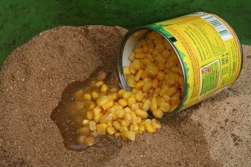 Karpfen Grundfutter