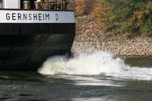 Angeln am Rhein